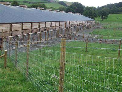 草原网围栏应用